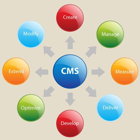 hire cms developer